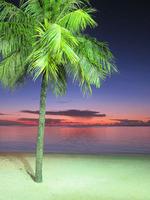 Guam05